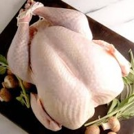 Colin Reason's Barn Reared White Turkey's weight range 4kg to 8 kg